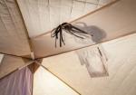 Палатка для зимней рыбалки Снегирь 1Т